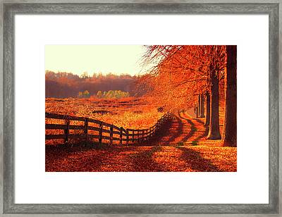 On A Day Like Today Framed Print by Iryna Goodall