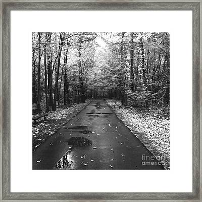 On A Drizzly Day Framed Print