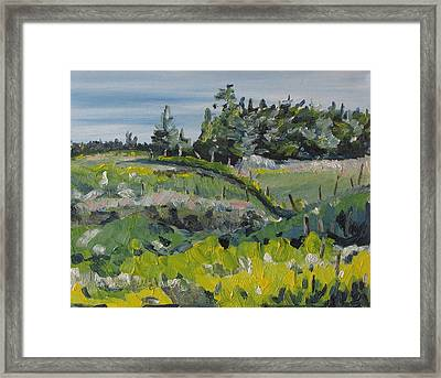 On A Field Of Golden Rods Framed Print