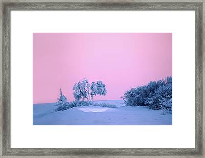 On A Magical Wintery Morning.... Framed Print