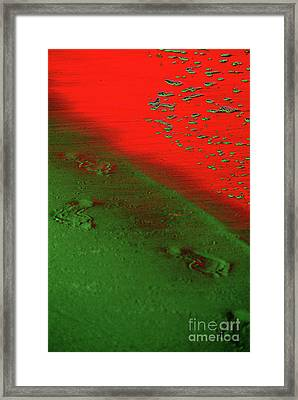 On A New Planet Framed Print by Susanne Van Hulst