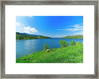 On A Perfect Summer Afternoon Framed Print by Jon Burch Photography