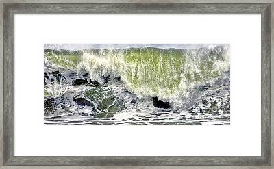 On A Roll Framed Print by Olivier Le Queinec