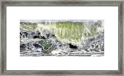 On A Roll Framed Print