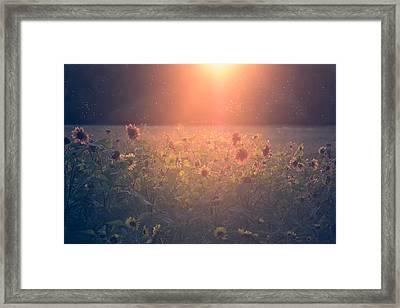 On A Warm Summers Evening Framed Print by Chris Fletcher