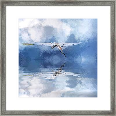 On A Wing And A Prayer Framed Print by Cyndy Doty