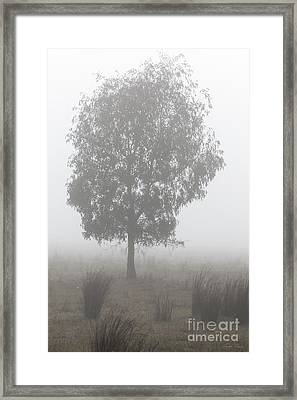 Framed Print featuring the photograph On A Winter's Morning by Linda Lees