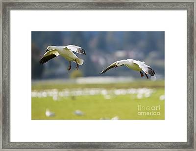 On Approach Framed Print by Mike Dawson