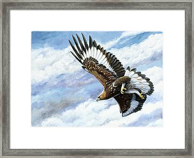 On Attack Framed Print by Dag Peterson