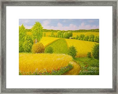 On August Grain Fields Framed Print by Veikko Suikkanen