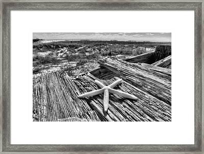 On Dauphin Island Framed Print by JC Findley