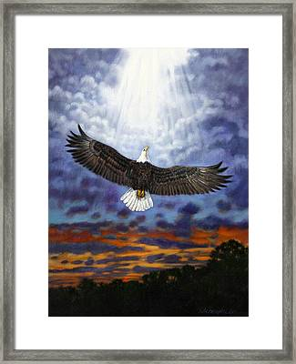 On Eagles Wings Framed Print by John Lautermilch
