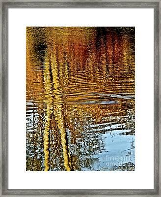 On Golden Pond Framed Print by Carol F Austin