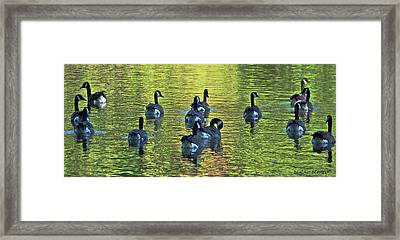 On Golden Pond Framed Print by DigiArt Diaries by Vicky B Fuller