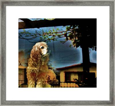 On Guard Framed Print by Helen Carson