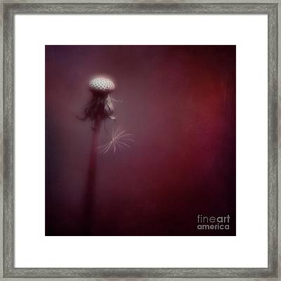 On Its Own Framed Print
