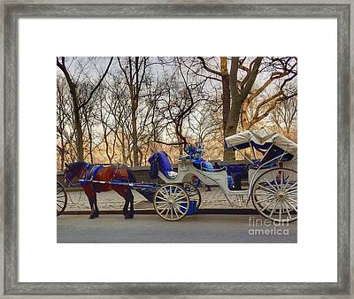 On My Bucket List Central Park Carriage Ride Framed Print