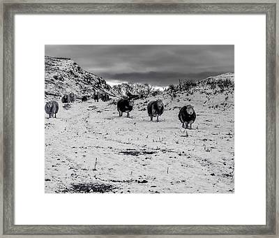 On Our Way Framed Print