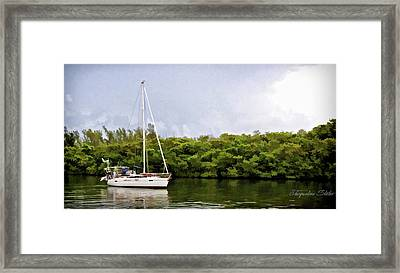 On Quiet Waters Framed Print