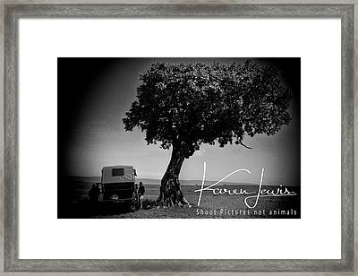 Framed Print featuring the photograph On Safari by Karen Lewis