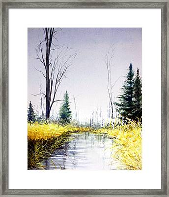On Silver Pond Framed Print