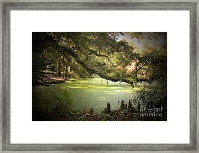 On Swamp's Edge Framed Print
