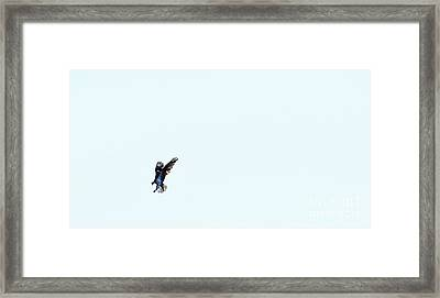 On The Attack Framed Print