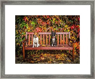 On The Bench Framed Print