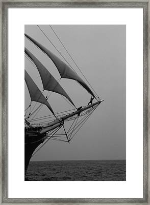 On The Bow Framed Print