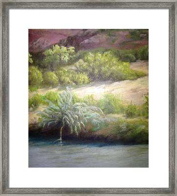 On The Chama Framed Print