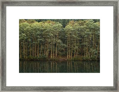 On The Clackamas Framed Print by Larry Darnell