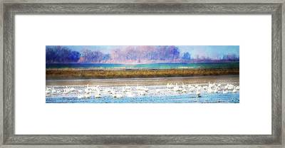 On The Delta Panorama Framed Print