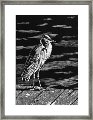 On The Dock In The Bay Framed Print by Diane Cutter