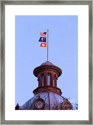 On The Dome-5 Framed Print
