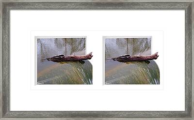 On The Edge - Gently Cross Your Eyes And Focus On The Middle Image Framed Print by Brian Wallace