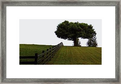 On The Farm Framed Print