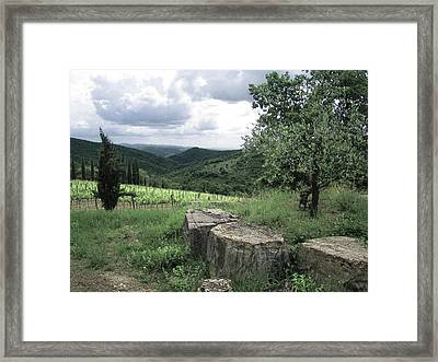 On The Farm Framed Print