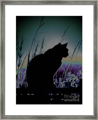On The Fence Framed Print by Karen Lewis