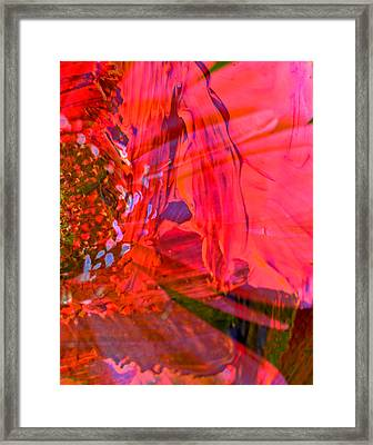 On The Floral Edge  Framed Print by Jeff Swan