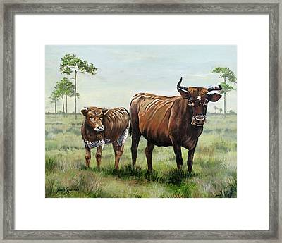 On The Florida Prairie Cracker Cattle Framed Print