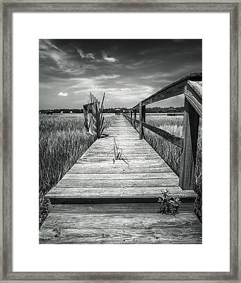 On The Island Framed Print