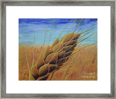 On The Kanza Framed Print