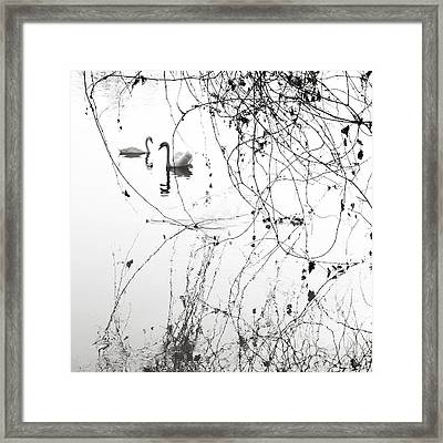 On The Lake  Framed Print by Floriana Barbu