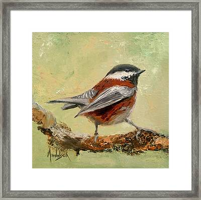 On The Lookout Framed Print by Barbara Andolsek