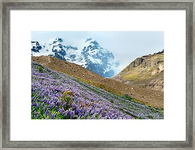 On The Low Path Framed Print