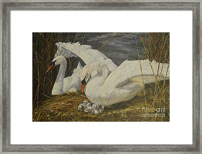 On The Nest Framed Print