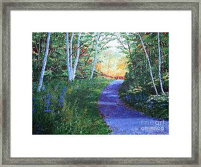 On The Path Framed Print