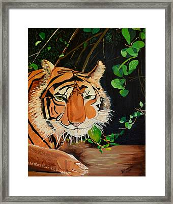 On The Prowl Framed Print by Donna Blossom