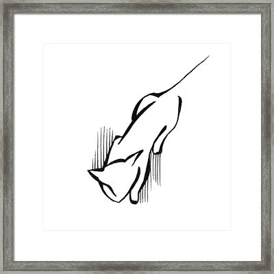 Framed Print featuring the drawing On The Prowl by Keith A Link