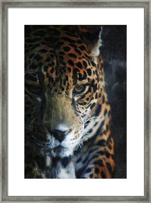 On The Prowl Framed Print by Trish Tritz